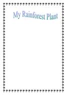 my rainforest plant.doc
