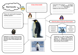 Penguin heat transfer worksheet