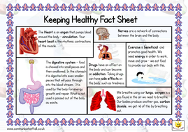 Keeping Healthy Double Sided Fact Sheet