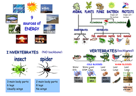 Science_CE_revision_cards_2.pdf