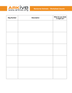 Nocturnal Animals - 5-7 years - Student worksheet.doc
