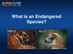 Endangered Species - 7-11 years - Classroom Presentation.ppt