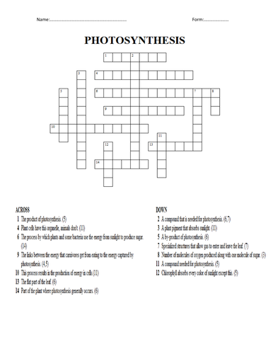 photosynthesis crossword Complete the crossword puzzle using what you know about the other compound converted during photosynthesis one word word.