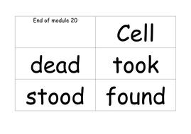 module 21 green words.docx