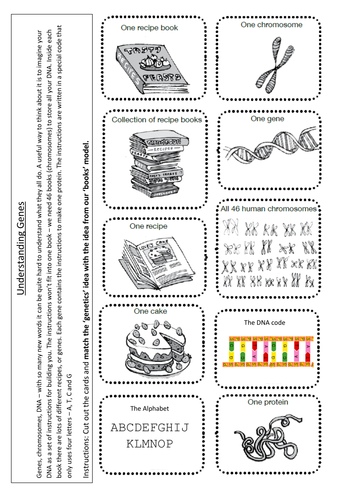 btec chromosomes genes dna by indigoandviolet teaching resources tes. Black Bedroom Furniture Sets. Home Design Ideas