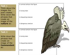 vultures activity.ppt