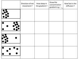 Diffusion Activities by GemmaButton | Teaching Resources