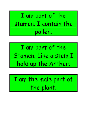 Naming the parts of the plant by smcaffrey teaching resources tes ccuart Images