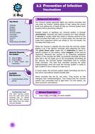 Junior Vaccinations - TS 1.doc