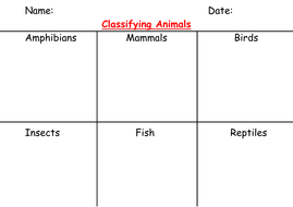 classifying animals worksheet and pictures by pantobabe teaching resources. Black Bedroom Furniture Sets. Home Design Ideas