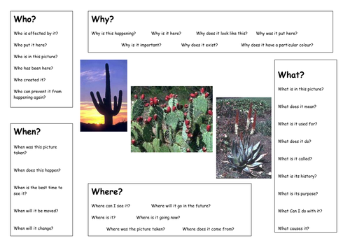 Deserts Plant Adaptations by mullarkey Teaching Resources Tes – Plant Adaptations Worksheet