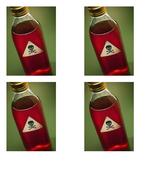 poison bottles.doc