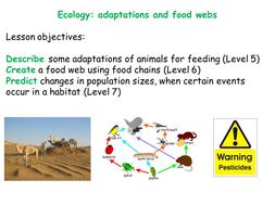 Food Webs: Cardsort Activity & IWB Powerpoint by lindaonye ...