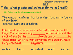 Lesson 4 - Ecosystems of Brazil.pptx