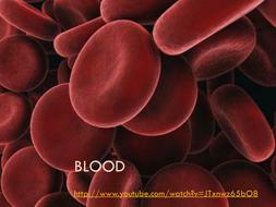 Blood B2 Topic 3