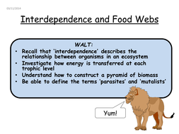Interdependance, mutualist, parasites, foodweb