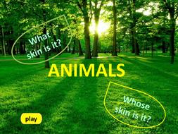 Game 'Animals'