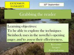 2 Grabbing the reader and animal imagery.pptx