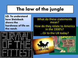 4 The law of the jungle.pptx