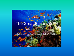 Great Barrier Reef Facts And Info