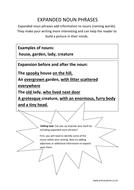 Expanded noun phrases.docx