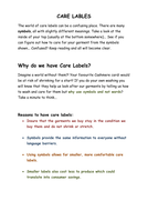 Care Labels Worksheet (differentiated) by jmcaulf - Teaching ...