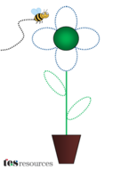 Draw the flower.png
