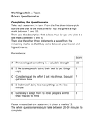 Working within a Team drivers questionnaire.doc