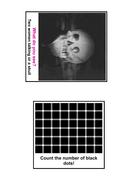 Optical Illusions.pdf