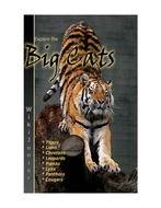 Text All about Lions and Tigers.pdf