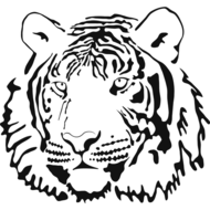 Tiger-Face-art pages.jpg