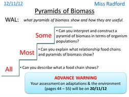 b1 2 pyramids of biomass aqa core science by hannahradford