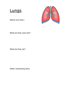 Lungs_template.docx