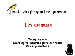 les animaux.ppt