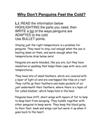 penguins bullet points -easier.doc