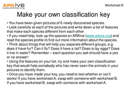 Newly Discovered Species - 7-11 - Make Your Own Classification Key Worksheet (B).ppt