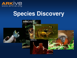Newly Discovered Species - 7-11 - Classroom Presentation.ppt
