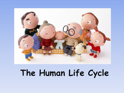 human life cycle ks2 ppt