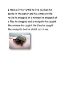 Turtle Poem