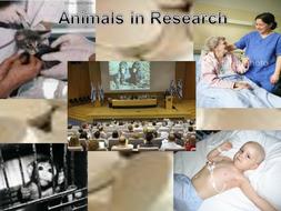 Animal Rights Debate Ppt.pptx
