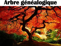 French vocabulary - Family Tree