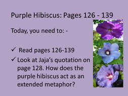 purple hibiscus analysis on how conflict is portrayed