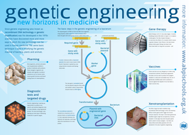genetic engineering by abpischools teaching resources tes