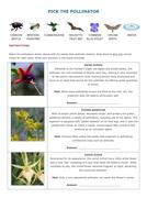 Pick the Pollinator Sheet.docx