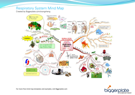 Mind Map - Respiratory System | Teaching Resources