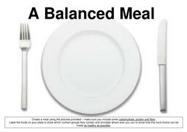 meal platesdocx plate templatedoc