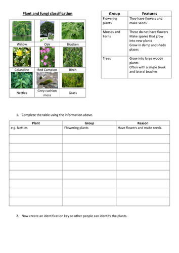 Plant classification by fjefferies123 - Teaching Resources ...