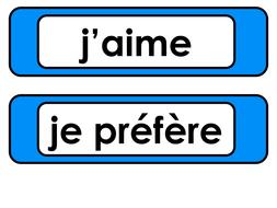 French_InfinitiveVariations.pptx