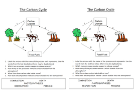 Printables The Carbon Cycle Worksheet b1 5 4 carbon cycle by nryates157 teaching resources tes answers rtf worksheet to fill in docx