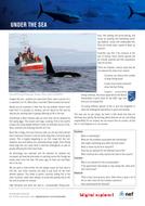 sf-under-the-sea.pdf